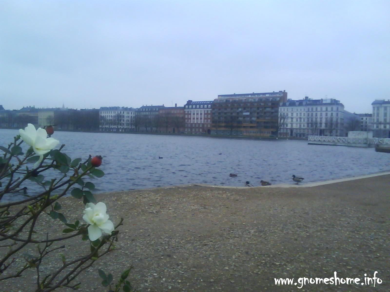 Copenhagen_5