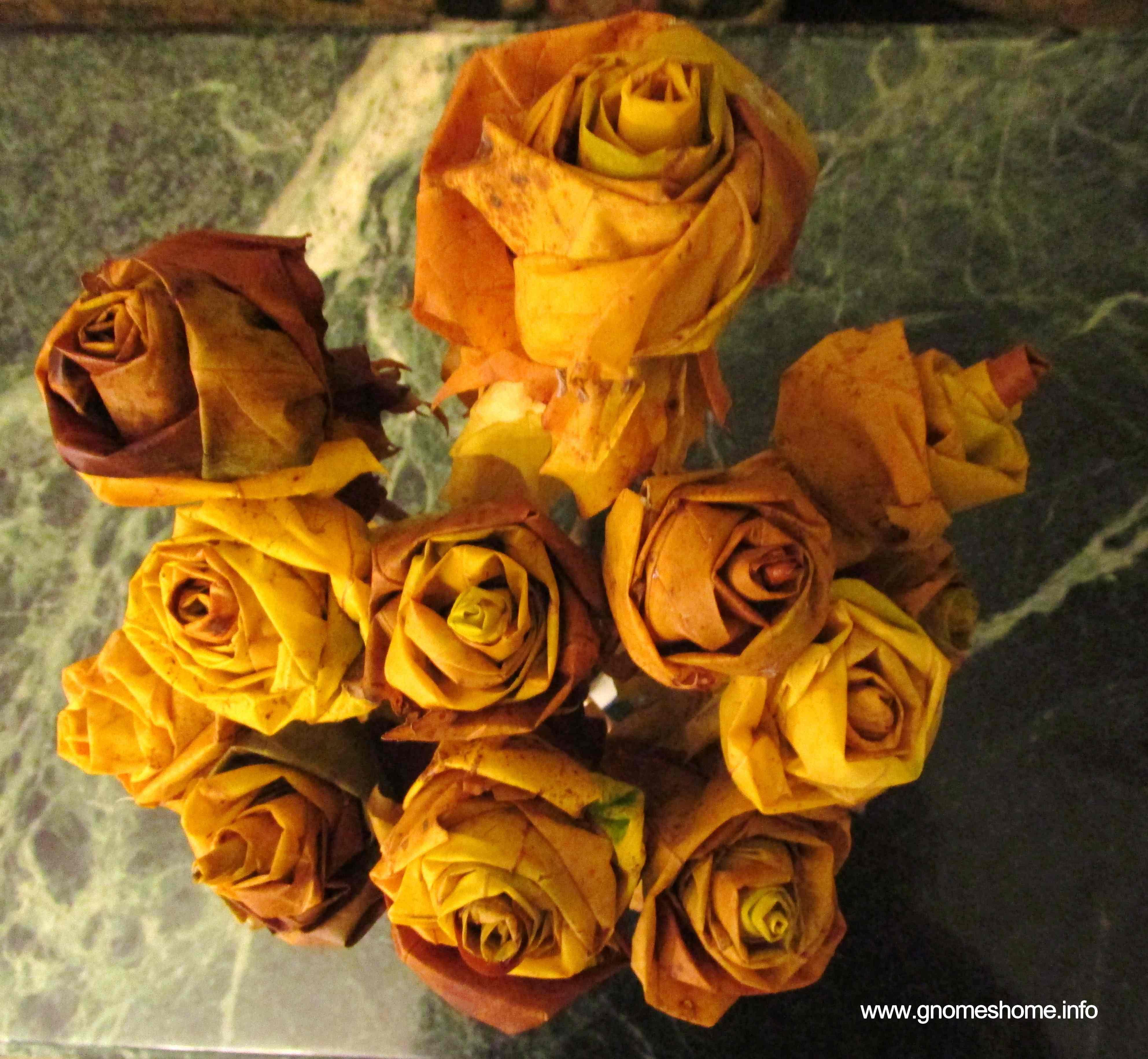 efterårets roser 1